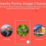 Gravity Forms Image Choices v1.3.40-学课技术网